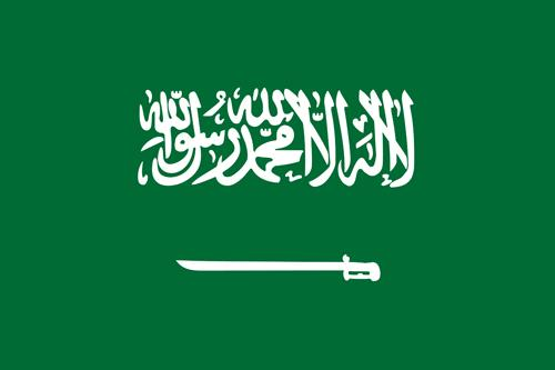 1580557188saudi-arabia-flag-small.jpg